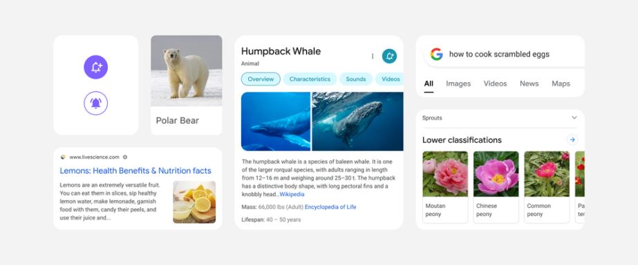 구글 모바일 검색업데이트