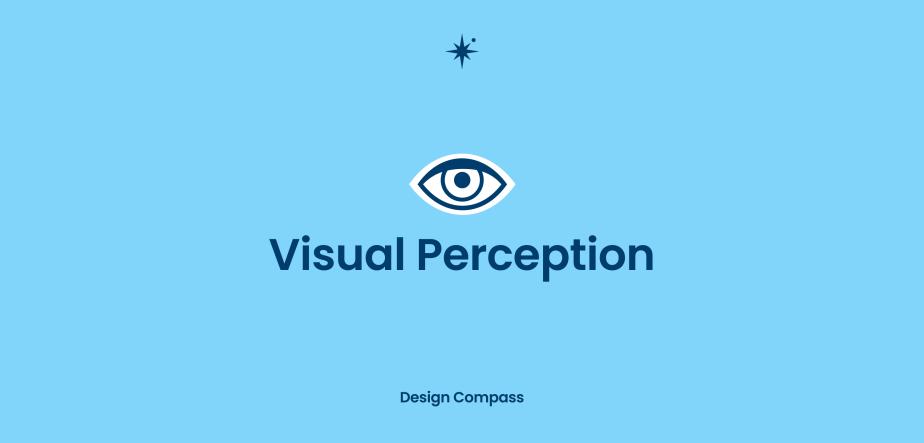 시각 인지 VisualPerception
